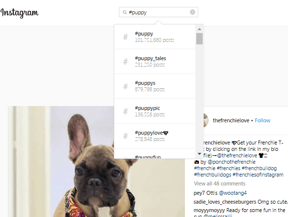 hashtag #puppy search results on Instagram
