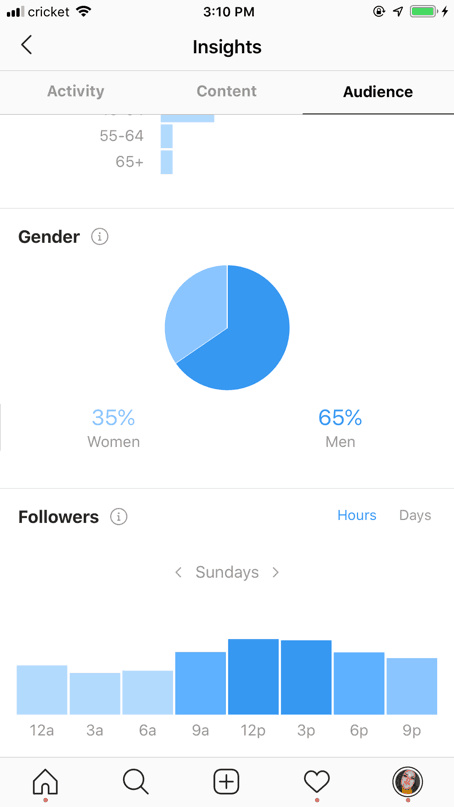Instagram analytics view for business accounts.