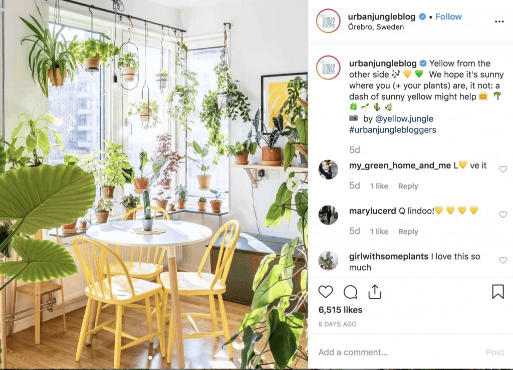 @urbanjungleblog Instagram